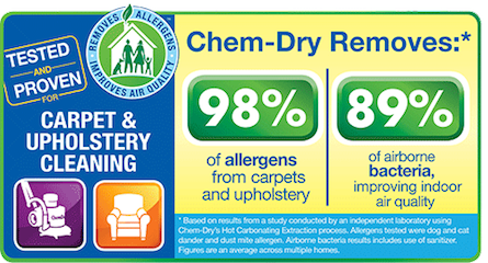Ivy Green Chem-Dry removes 98% of allergens from carpet and upholstery and 89% of airborne bacteria