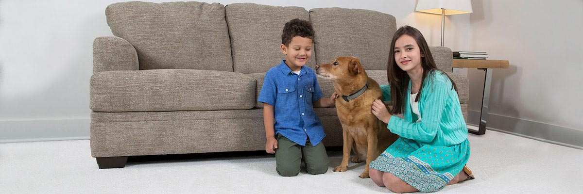 kids and dog on carpet in Corona CA