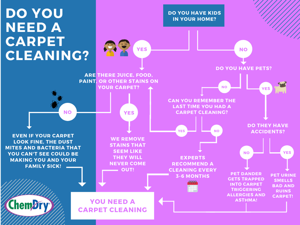 carpet cleaning flowchart do you need a carpet cleaning Corona CA