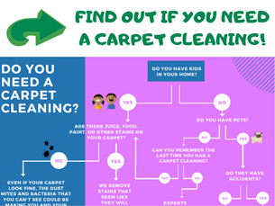 find out if you need a carpet cleaning blog Ivy Green Chem-Dry